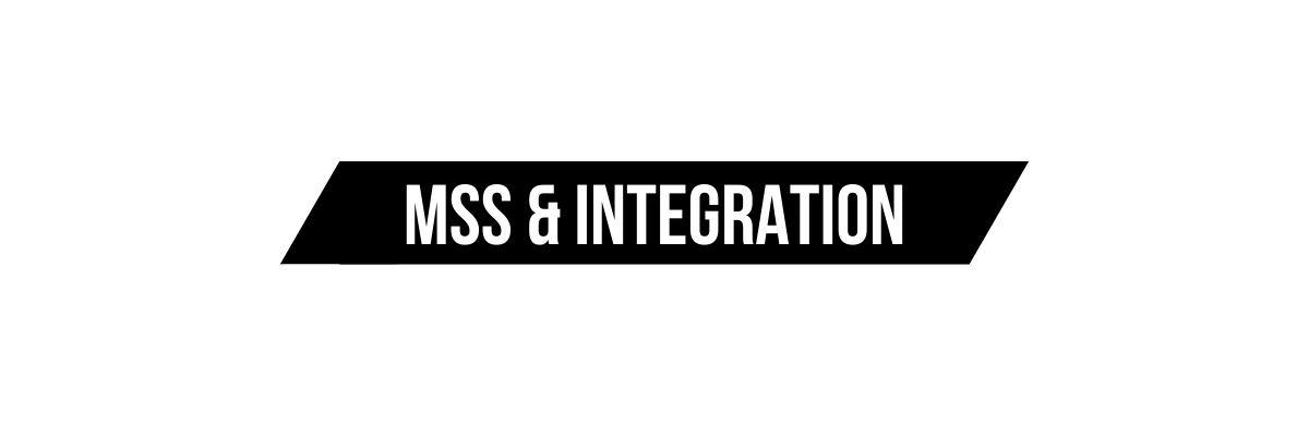 Managed Security Services & Integration